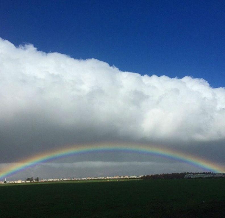 smile raindbow