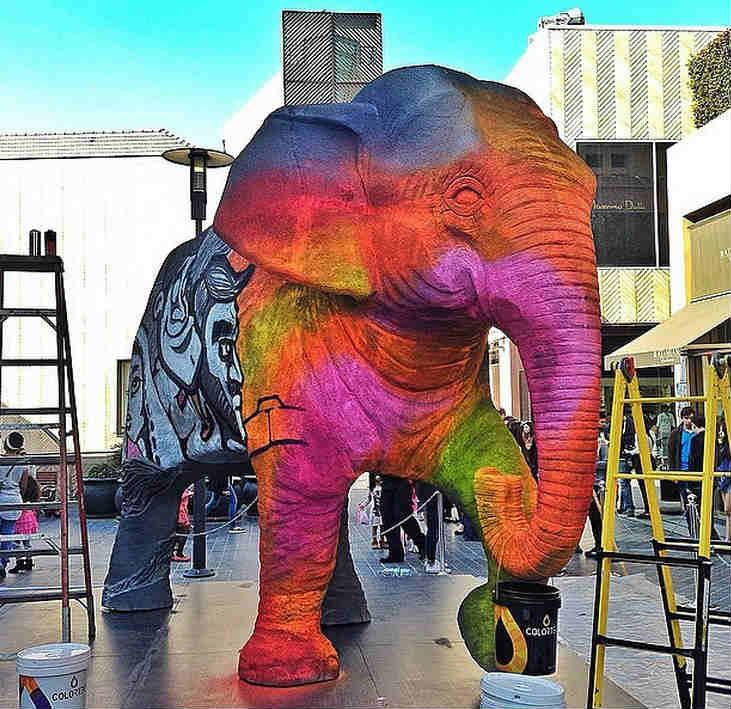 Souks elephant