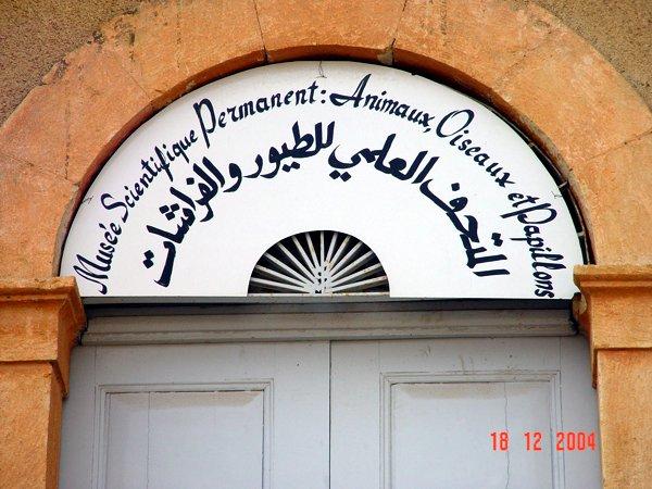 deir_museum6587w