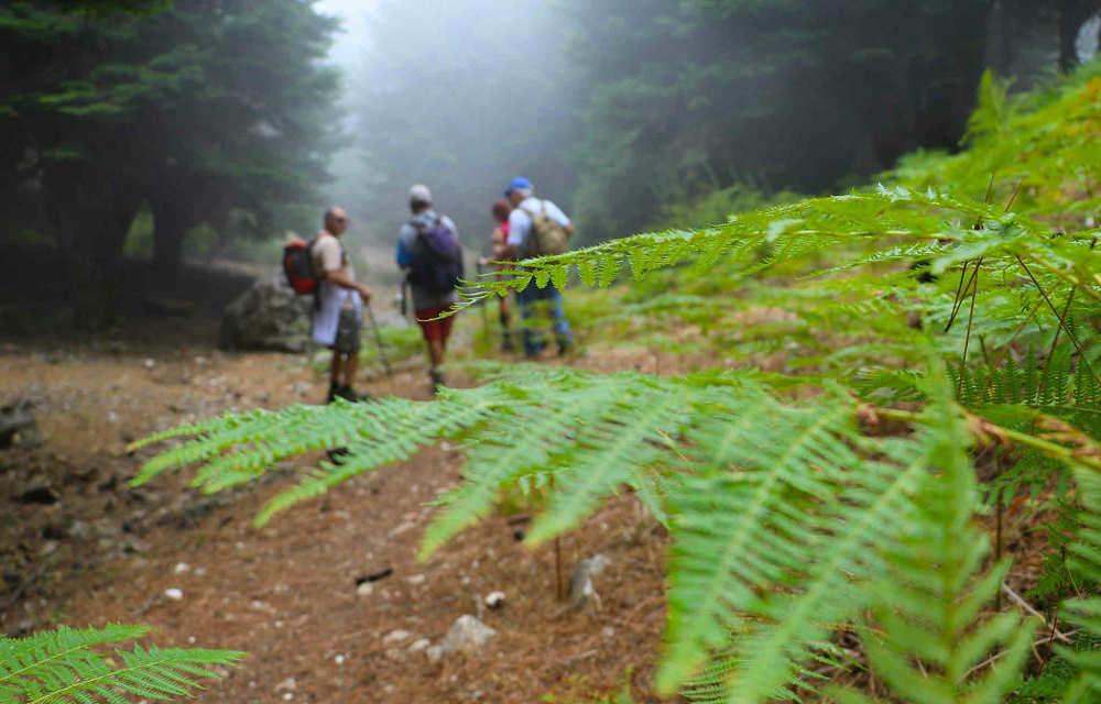 hiking6n