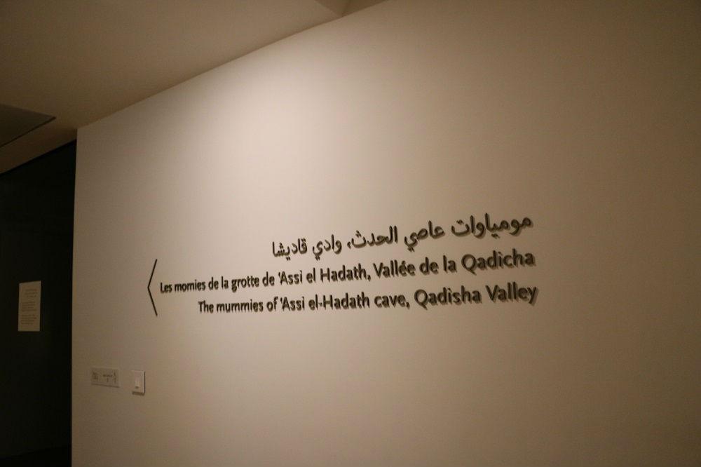 uf-museum111