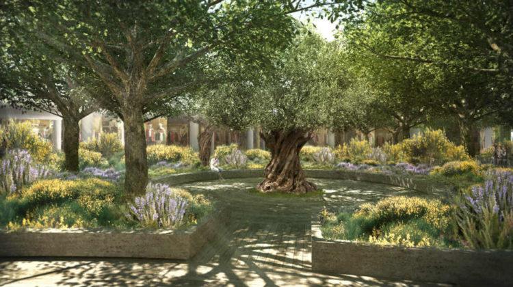Take a Sneak Peek into ABC Verdun's Garden