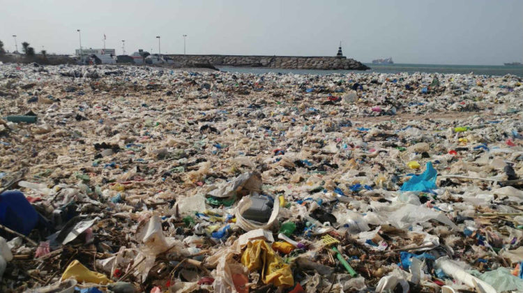 Two Explanations For the Accumulated Garbage on Keserwan Shores