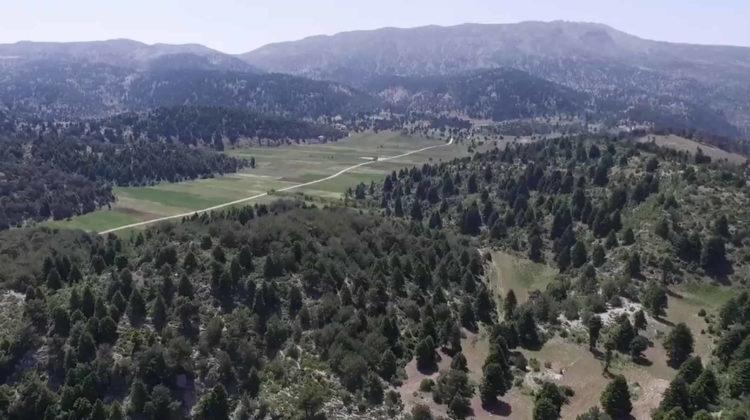 Stunning 7-Minute Video on Akkar: Lebanon's Green Treasure