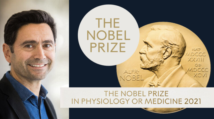 Lebanese-Born Ardem Patapoutian Wins 2021 Nobel Prize